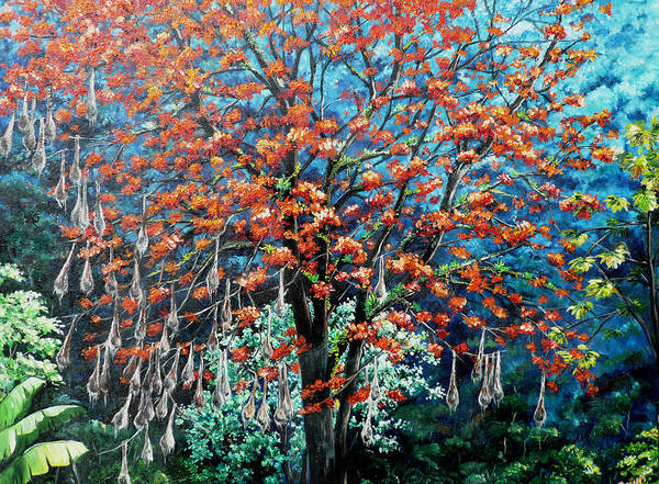Tree Painting Mountain Painting Floral Painting Caribbean Painting Original Painting Of Immortelle Tree Painting  With Nesting Corn Oropendula Birds Painting In Northern Mountains Of Trinidad And Tobago Painting Art Print featuring the painting The Mighty Immortelle by Karin Dawn Kelshall- Best