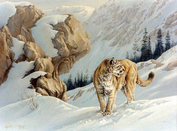 Wildlife Painting Art Print featuring the painting Uneasy by Kathleen V Butts