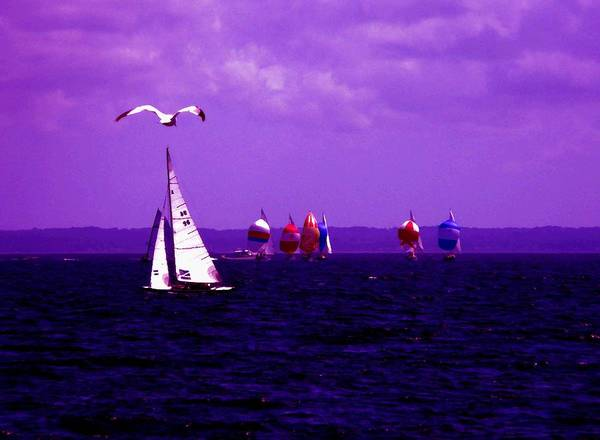 Sailboat Art Print featuring the photograph Way Up In The Clouds by Kendall Eutemey