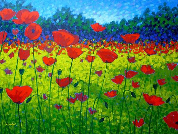 Flowers Art Print featuring the painting Poppy Field by John Nolan