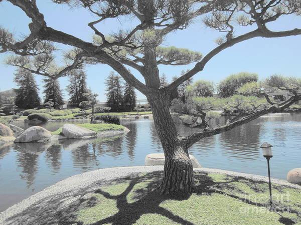 Zen Garden Art Print featuring the photograph Zen Garden by Eclectic Captures