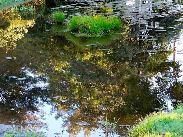Walden Pond Art Print featuring the photograph A Quiet Little Pond by Ira Shander