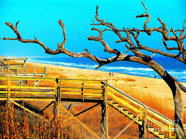 Carbo Art Print featuring the photograph A Walk On Atlantic Beach by Mj Carbo