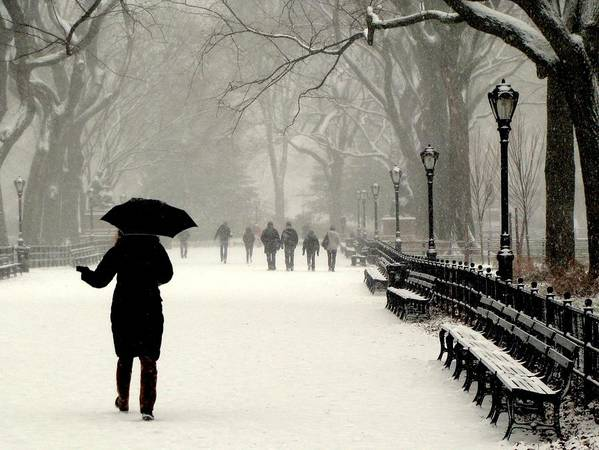 New York Art Print featuring the photograph A Winter Stroll by Jeff Watts