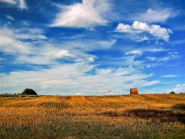 Ontario Art Print featuring the photograph Autumn Sky by Steve Harrington