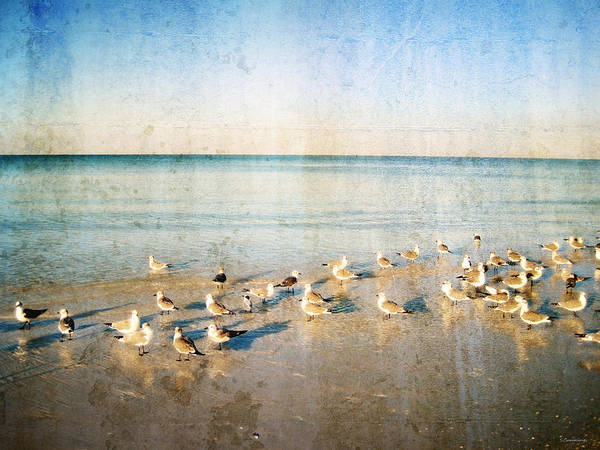 Seagull Art Print featuring the painting Beach Combers - Seagull Art By Sharon Cummings by Sharon Cummings