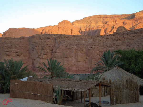 Colette Art Print featuring the photograph Beduin Camp In The Sinai Desert Egypt by Colette V Hera Guggenheim