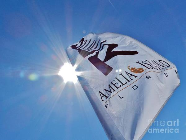 Beer Art Print featuring the photograph Beer Flag by Robert Ulmer