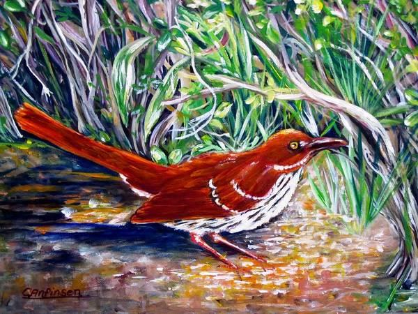 Brown Thrasher Art Print featuring the painting Brown Thrasher In Sunlight by Carol Allen Anfinsen