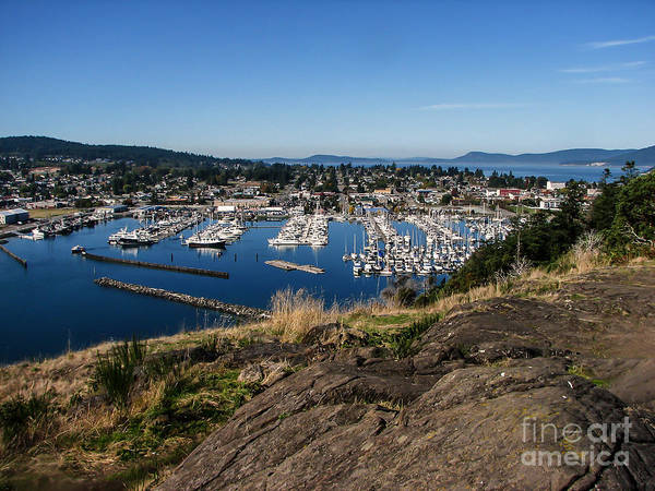Anacortes Art Print featuring the photograph Cap Sante Marina by Robert Bales