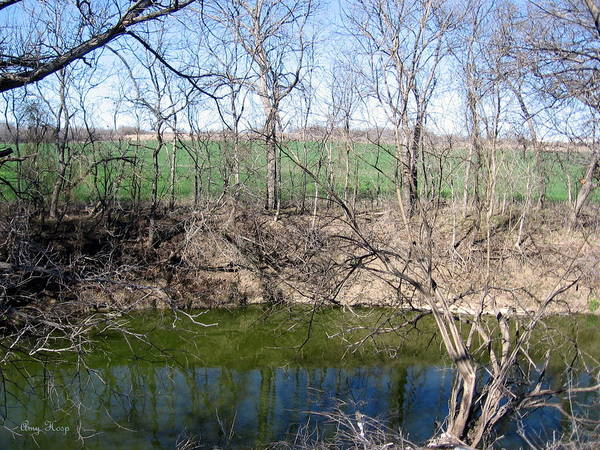 Creek Art Print featuring the photograph Creek Recovering From Winter by Amy Hosp