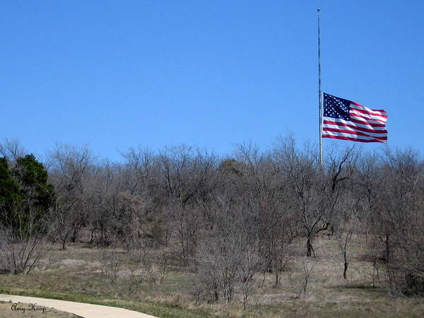 Military Art Print featuring the photograph Dfw National Cemetery Flag On The Hill by Amy Hosp