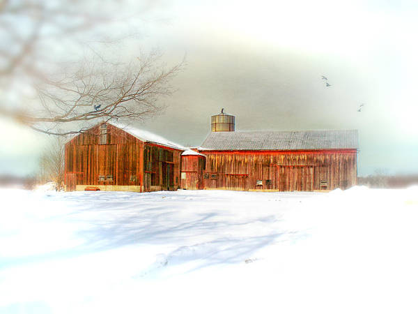 Dreamy Art Print featuring the photograph Dreams Of A White Christmas by Mary Timman