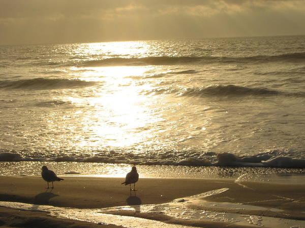 Beach Art Print featuring the photograph Evening Stroll by Judith Morris