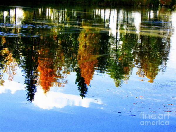 Autumn Canvas Prints Art Print featuring the photograph Fall Colors by Pauli Hyvonen
