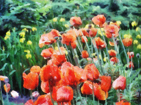 Canadian Art Print featuring the painting Field Of Flowers by Jeff Kolker