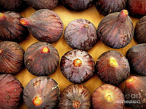 Figs Art Print featuring the photograph Figs by Lainie Wrightson