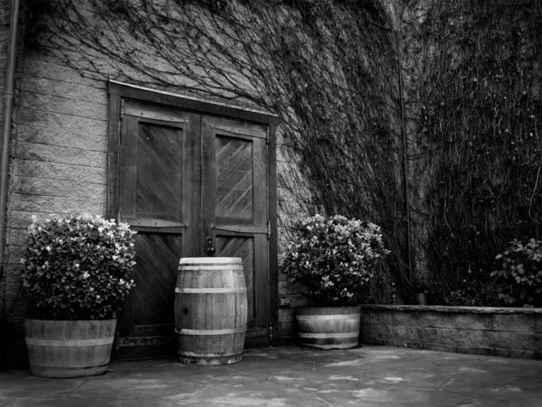 Vineyard Art Print featuring the photograph Firestone Vineyard by Jeff Garris