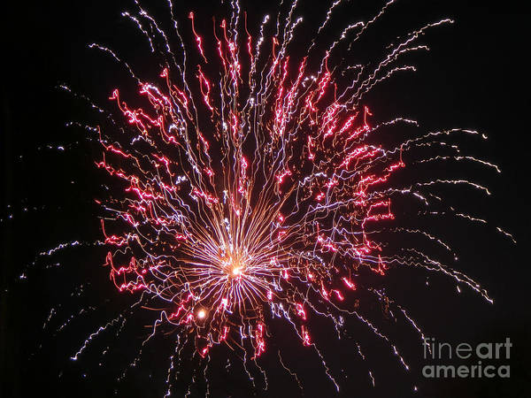 Fireworks Art Print featuring the photograph Fireworks For All by Terry Weaver