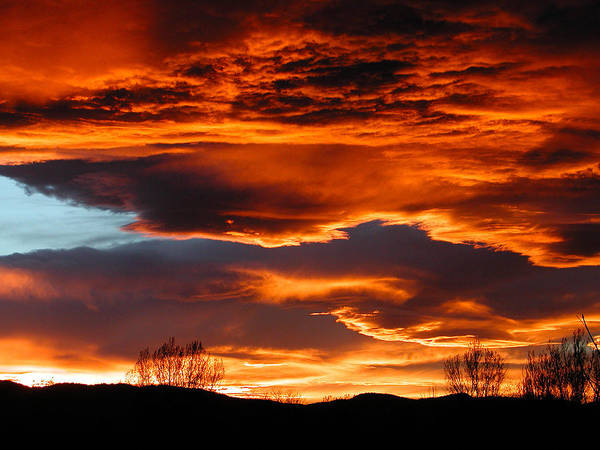 Fort Collins Art Print featuring the photograph Halloween Sunset by Tim Nielsen
