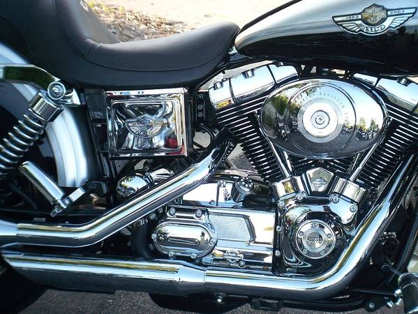 Motorcycles Art Print featuring the photograph Harley Black And Silver Sideview by Anita Burgermeister