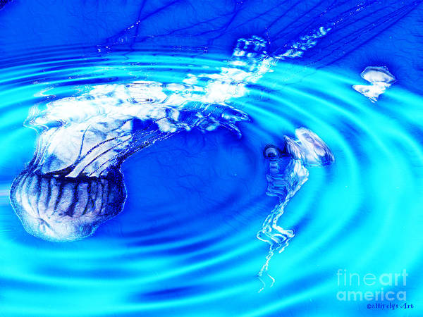 Jellyfish Pool Art Print featuring the photograph Jellyfish Pool by Methune Hively