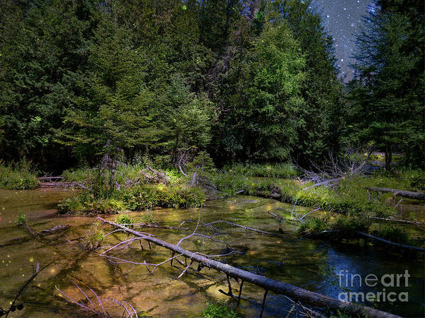 Mj Olsen Print featuring the photograph Jordan Headwaters In The Moonlight by MJ Olsen