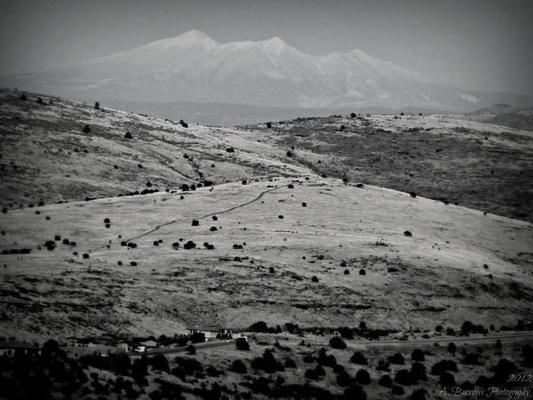 Prescott Art Print featuring the photograph Juniper Hills To Snowy Arctic Peaks Black And White by Aaron Burrows