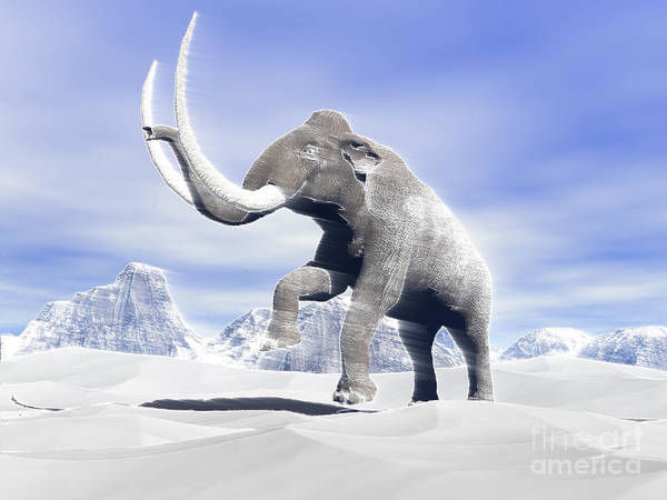 Three Dimensional Art Print featuring the digital art Large Mammoth Walking Slowly by Elena Duvernay