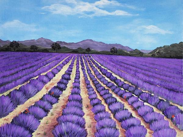 Interior Print featuring the painting Lavender Field In Provence by Anastasiya Malakhova
