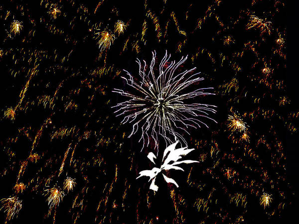 Fireworks Art Print featuring the photograph Lighting Up The Sky by Aimee L Maher Photography and Art Visit ALMGallerydotcom