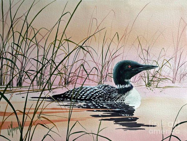 Loon Art Print featuring the painting Loon Sunset by James Williamson