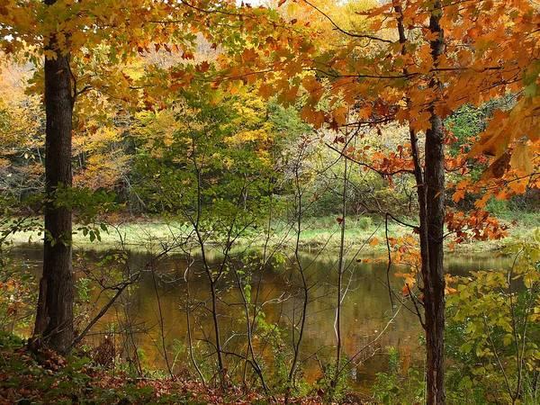 New England Art Print featuring the photograph Meduxnekeag River 2 by Gene Cyr