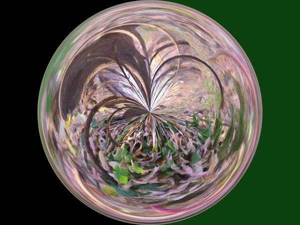 Wall Art Art Print featuring the photograph Morphed Art Globe 36 by Rhonda Barrett