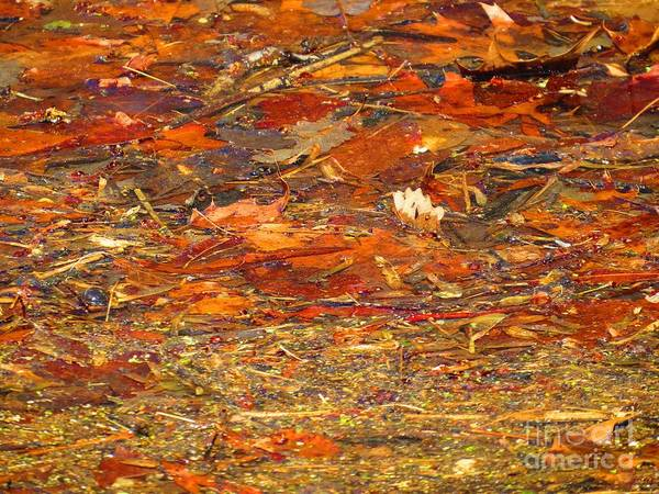 Abstract Art Print featuring the photograph Mothers Abstract 07 by Rrrose Pix