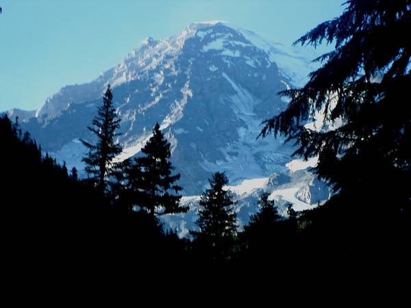 Kathy Long Art Print featuring the photograph Mount Rainier 14 by Kathy Long