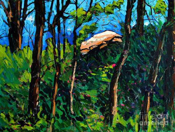 Treaty Print featuring the painting Mushrooming At Treaty Rock by Charlie Spear