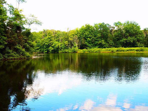 Lake Photography Art Print featuring the photograph Natures Mirror by Deborah Fay