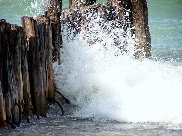 Dock Art Print featuring the photograph Old Dock Pilings Beaten By Waves by Kathleen Luther
