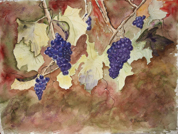 Grapes Print featuring the painting On The Vine by Patricia Novack