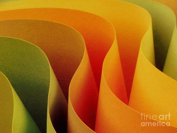 Ranjini Kandasamy Art Print featuring the photograph Paper Curves by Ranjini Kandasamy