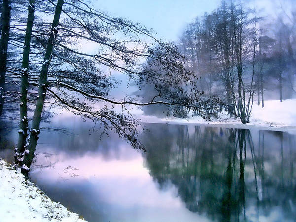 Snow Art Print featuring the photograph Pastel Pond by Jessica Jenney