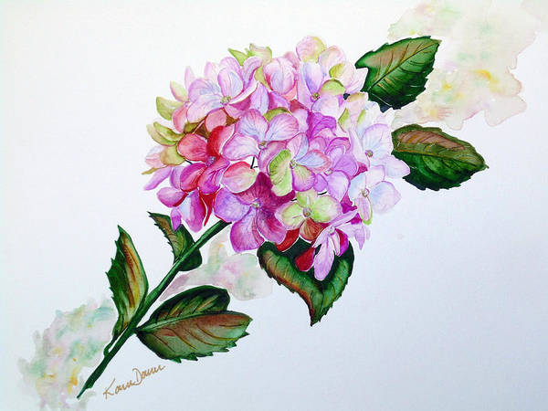 Hydrangea Painting Floral Painting Flower Pink Hydrangea Painting Botanical Painting Flower Painting Botanical Painting Greeting Card Painting Painting Art Print featuring the painting Pretty In Pink by Karin Dawn Kelshall- Best