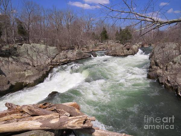 Great Falls Art Print featuring the photograph Raging Peace by Rrrose Pix