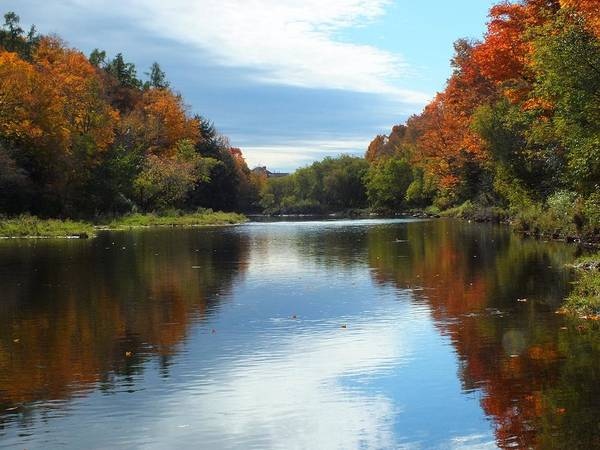 New England Art Print featuring the photograph Riverside Colors 1 by Gene Cyr