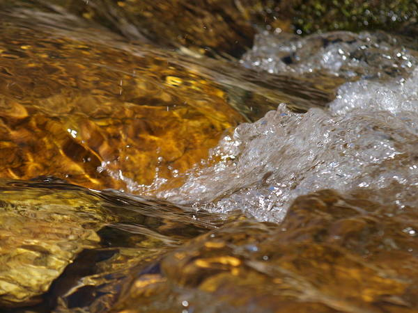 Water Art Print featuring the photograph Rocks And Water by Daralyn Spivey