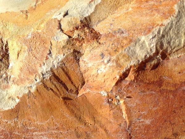 Rock Art Print featuring the photograph Rockscape 8 by Linda Bailey