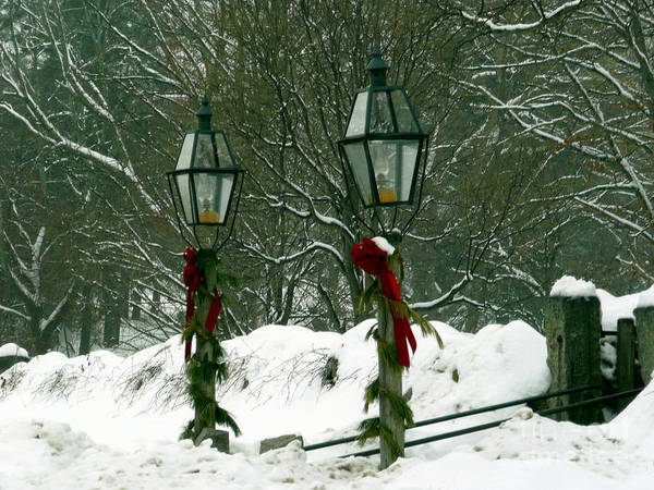 Lamppost Art Print featuring the photograph Season's Greetings by Jayne Carney