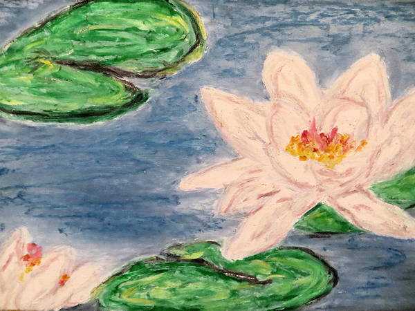 Water Lillies Color Impressionism Color Marsh Plant Aquatic Silver Green Color Pink Yellow White Simplistic Style Ocean Art Print featuring the pastel Silver Lillies by Daniel Dubinsky