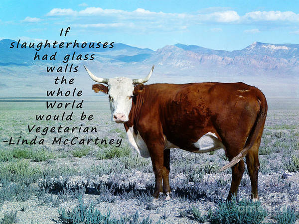 Ableist Art Print featuring the photograph Slaughterhouses by Janice Rae Pariza